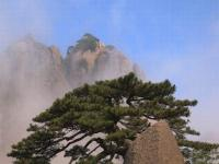 Huangshan Picture